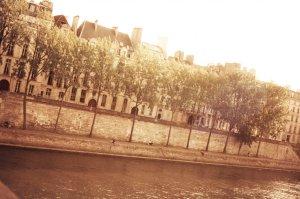 2011 ashley in paris 11